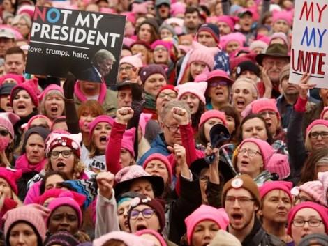 """Résultat de recherche d'images pour """"pussy hats"""""""