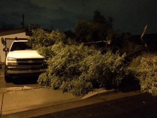 Mesa storm damage