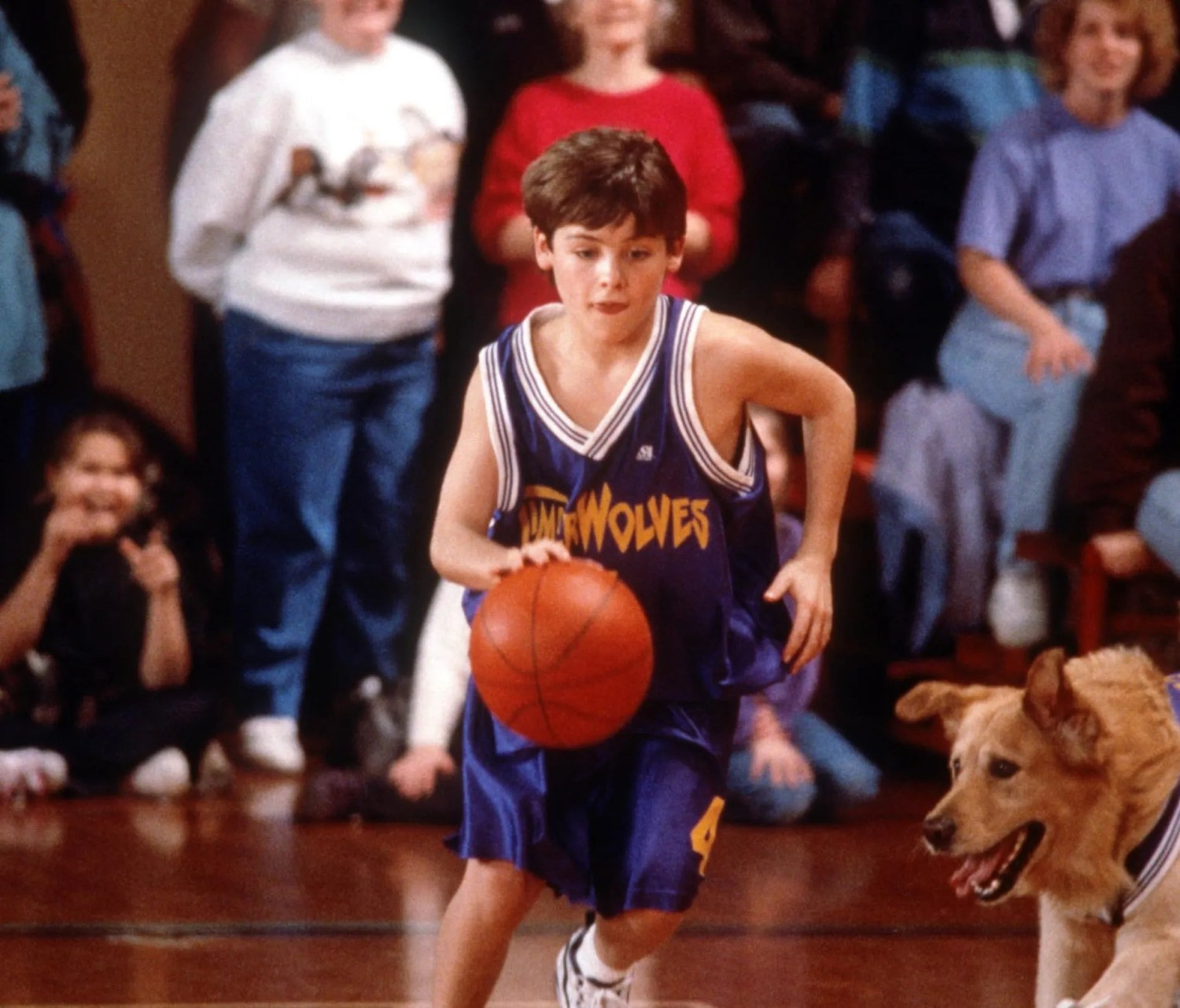 Buddy from Air Bud