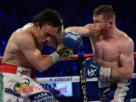 Julio Cesar Chavez Jr. winces after taking a right