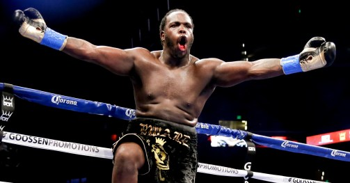 Image result for bermane stiverne