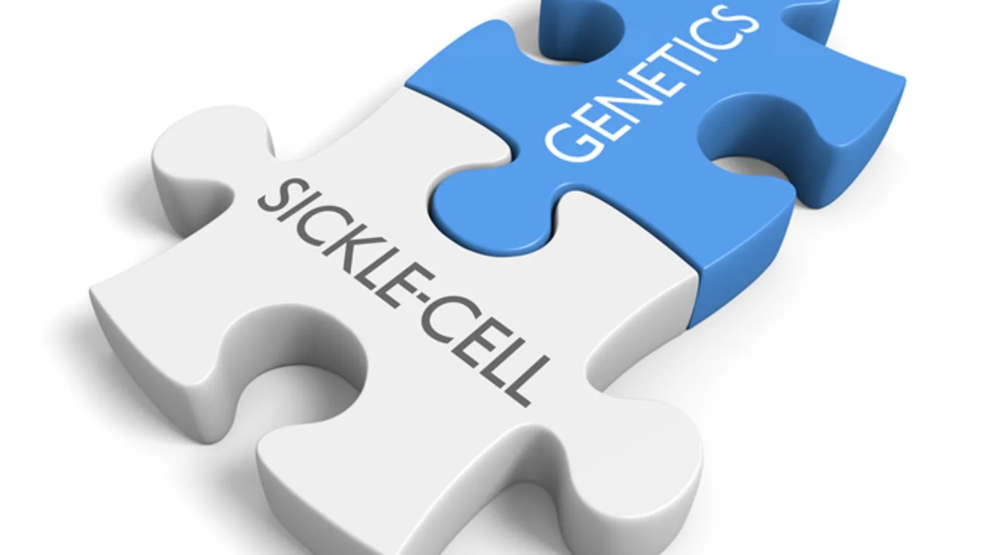 Newyork Presbyterian Sickle Cell Anemia And Its Latest