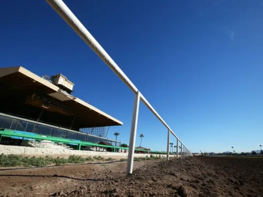 Turf Paradise was built 60 years ago.