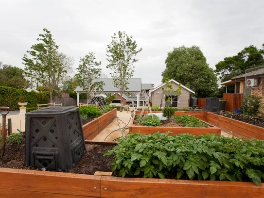 Once you get the hang of it, backyard vegetable gardens