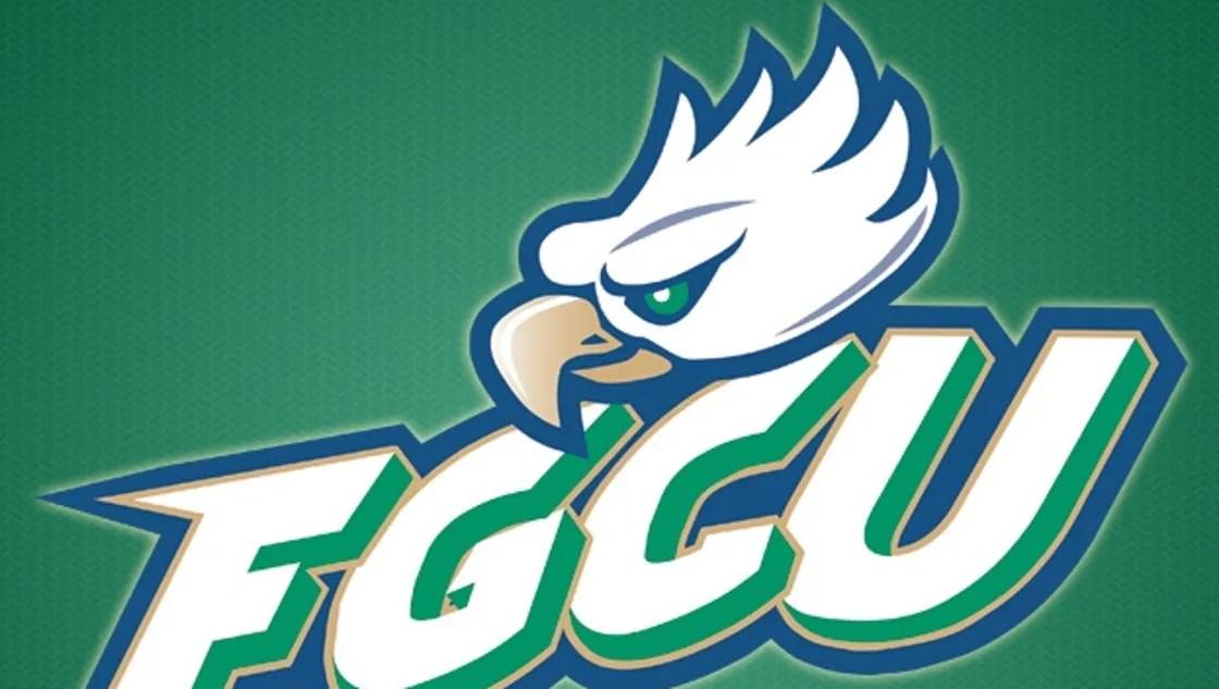 Image result for fgcu logo green background