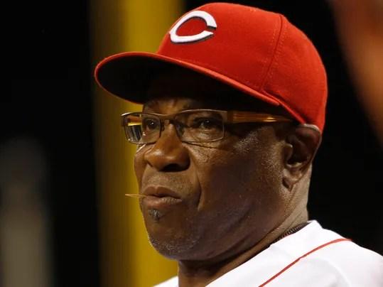 https://i2.wp.com/www.gannett-cdn.com/-mm-/7be0eb1afc93b6a123eb456cfcabf071059b9ed8/c=0-286-2898-2457&r=x404&c=534x401/local/-/media/USATODAY/USATODAY/2013/10/04/1380887908000-USP-MLB-St-Louis-Cardinals-at-Cincinnati-Reds.jpg