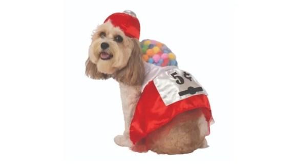 Gumball dog costume