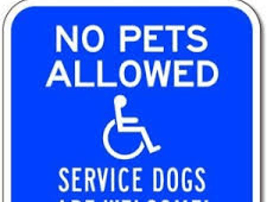no dogs allowed2