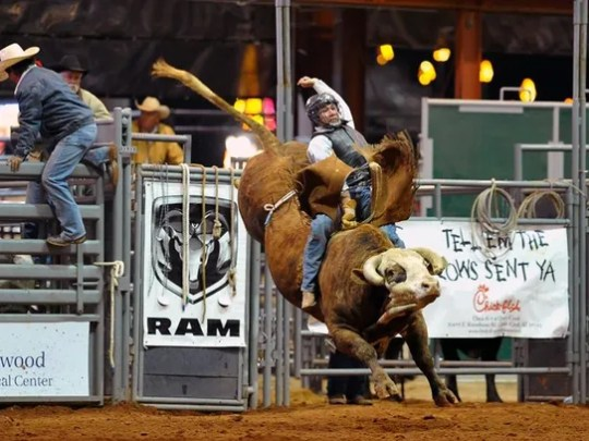 A bull rider hangs on tight at the Roots N' Boots festival