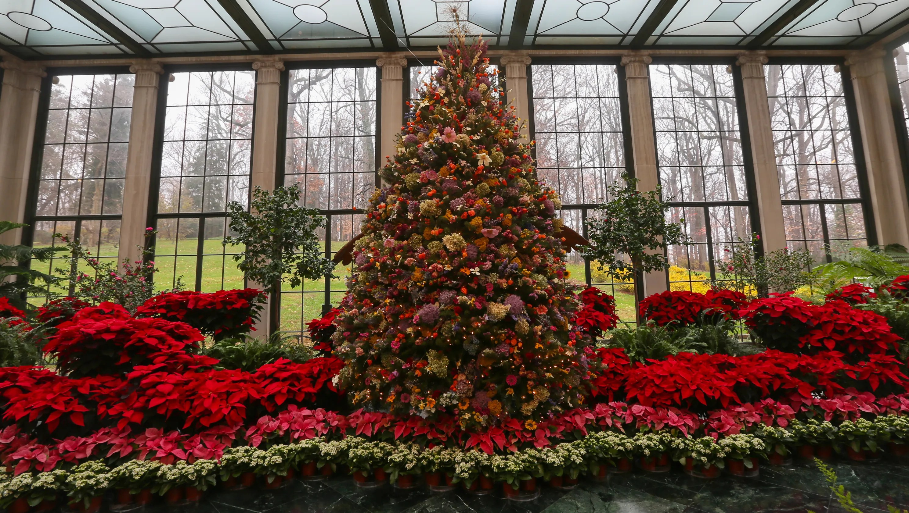 30th Anniversary Of The Dried Flower Tree At Yuletide At