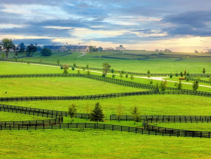 horse farm kentucky