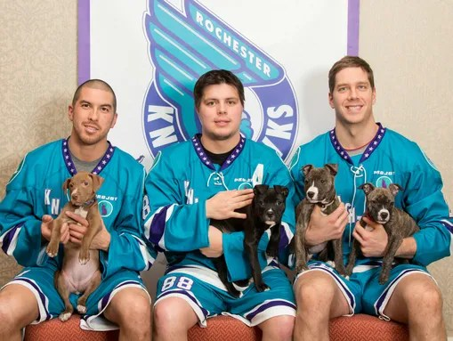 Rochester Knighthawks Players