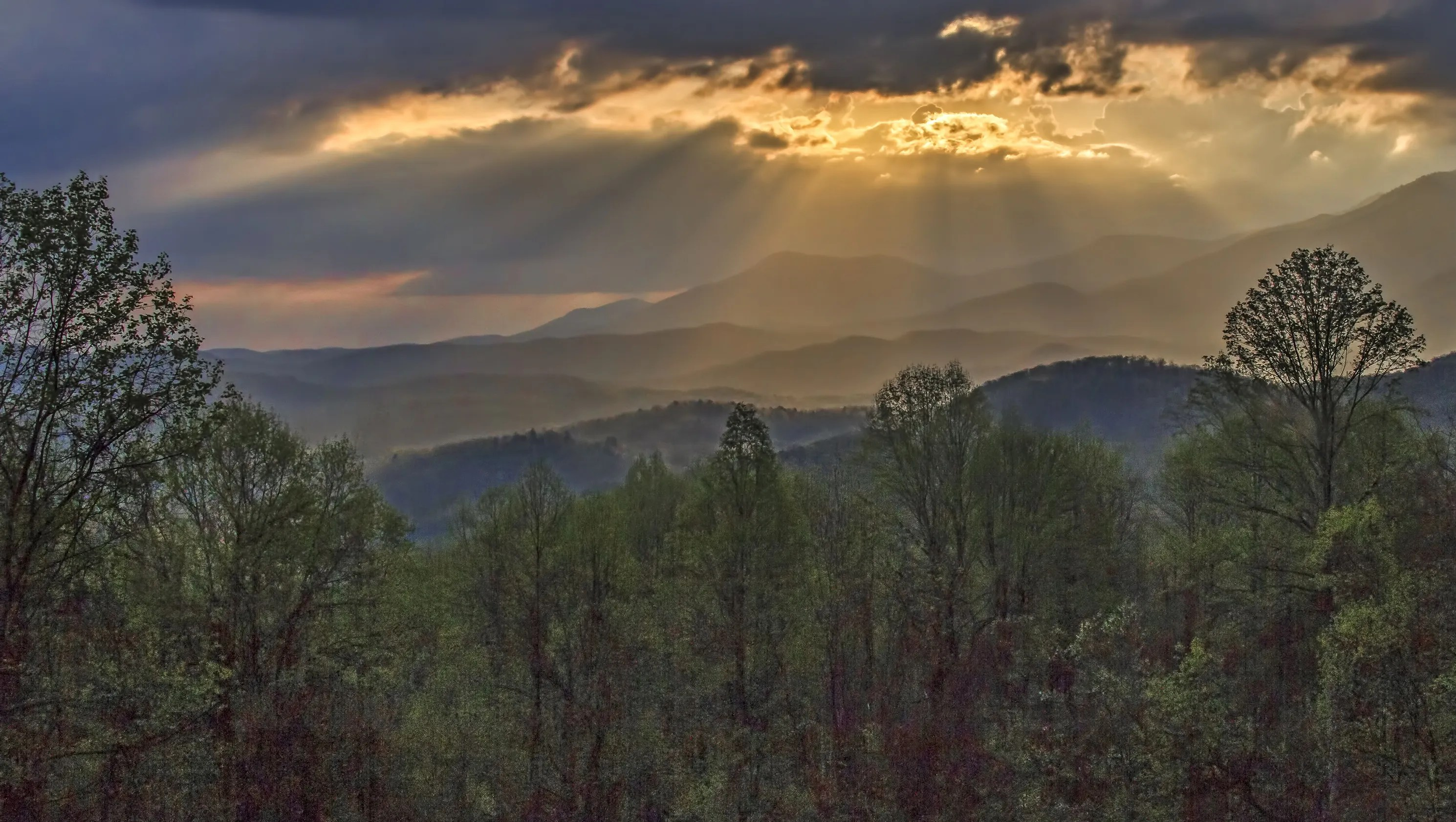 National Park Week See Why Great Smoky Mountains Is The