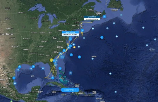 Travel Cabot, the large white shark, tracked by OCEARCH.