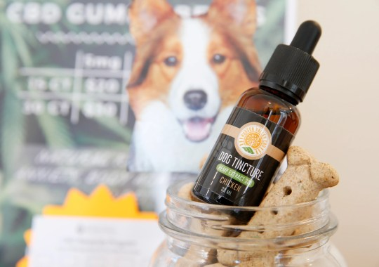 CBD tincture for dogs from Hudson Valley CBD for sale at Hudson Valley Healing Center in the Town of Poughkeepsie on May 16, 2019.