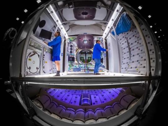 Dies könnte sein, wie Lockheeds Martins Weltraum-Mondlandschaften aussehen, wenn die NASA mit dem Design der Luft- und Raumfahrtfirma zusammenarbeitet.