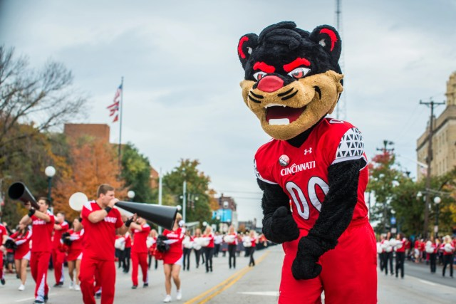 The Bearcat mascot pumps up the fans lined up along Clifton Avenue Saturday afternoon during the University of Cincinnati Homecoming Parade October 24, 2015.