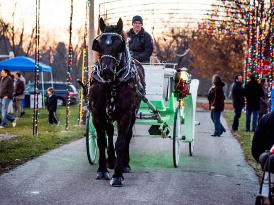Carriage rides will be featured during Westfield in Lights 2018