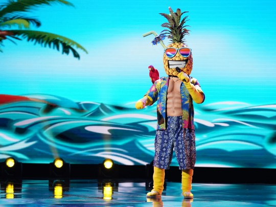 "The Pineapple on ""The Masked Singer."""