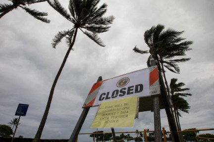In this Aug. 8, 2014 file photo, winds from Tropical Storm Iselle blow palm trees near a sign warning of the closure of Kualoa Regional Park in Honolulu. A winter storm on Sunday brought wind up to 54 mph and waves as high as 60 feet.