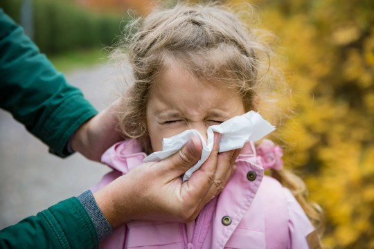 """Zu den Symptomen einer Grippe gehören: verstopfte Nase, Fieber, Husten, Muskel- oder Körperschmerzen, Kopfschmerzen und Müdigkeit. """"Width ="""" 540 """"data-mycapture-src ="""" """"data-mycapture-sm-src ="""""""