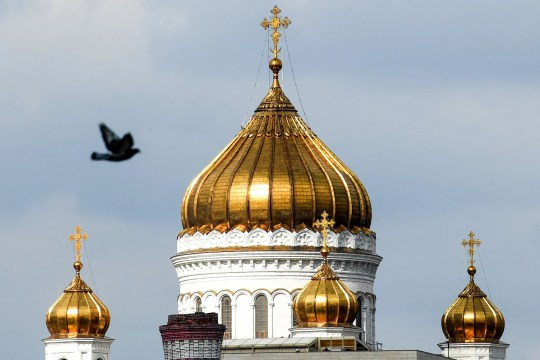 A pidgeon flies above Christ the Saviour Cathedral, in Moscow on April 7, 2019.
