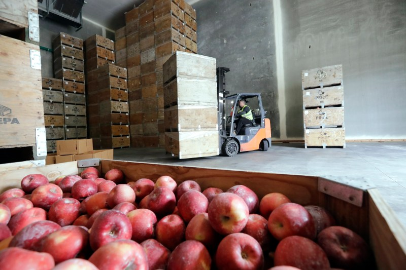 A new apple is debuting at grocery stores. It