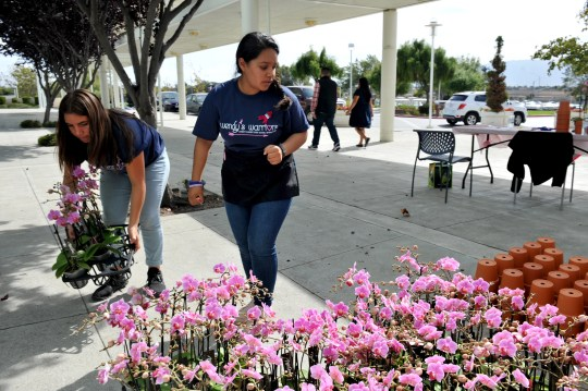 Haley Alvarez and Ester Mendez-Maldonado organize orders for orchids during the Everett Alvarez Interact Club's Wendy Baker Day fundraiser at Natividad Oct. 11, 2019.