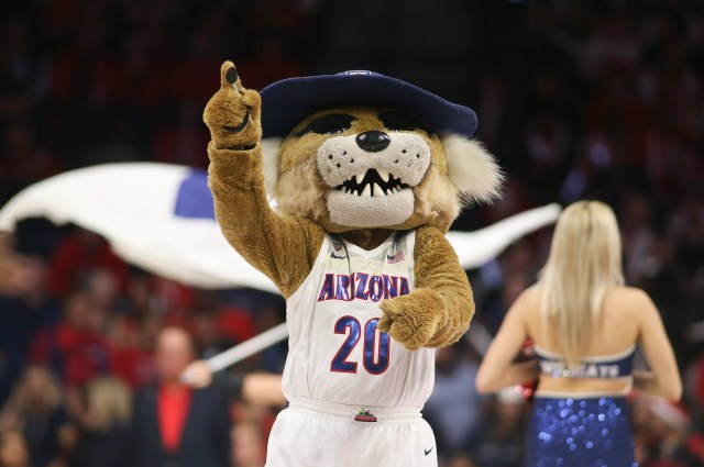 March 5: Arizona  mascot Wilbur T. Wildcat celebrates in the second half during the game against Washington State at McKale Center.