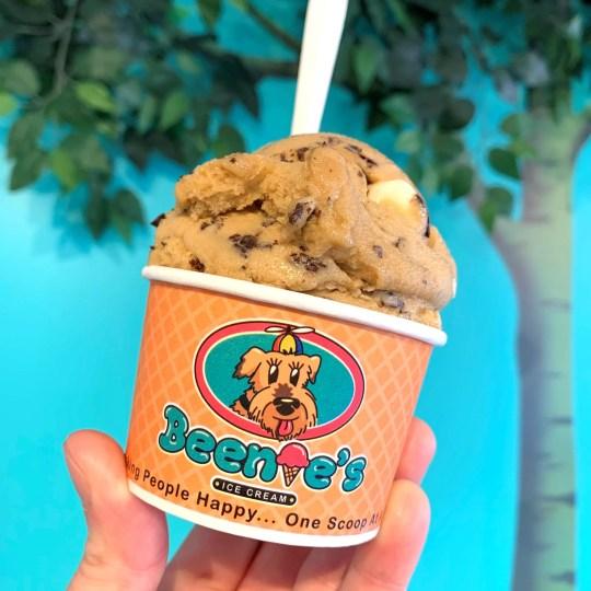 Beenie's vegan ice cream