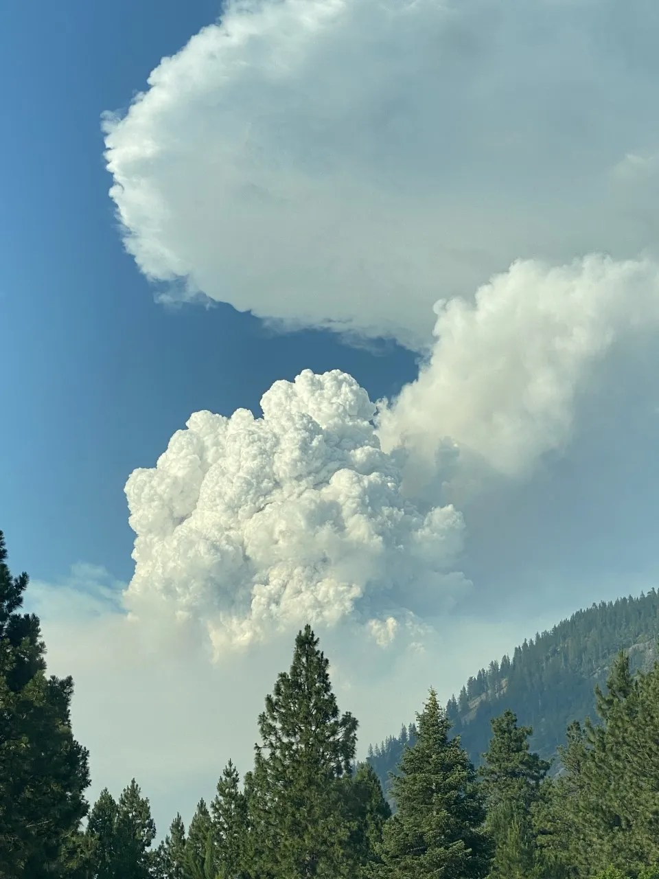 A Pyrocumulus cloud rises above Black Butte from the Lava Fire on Wednesday evening, June 30, 2021.