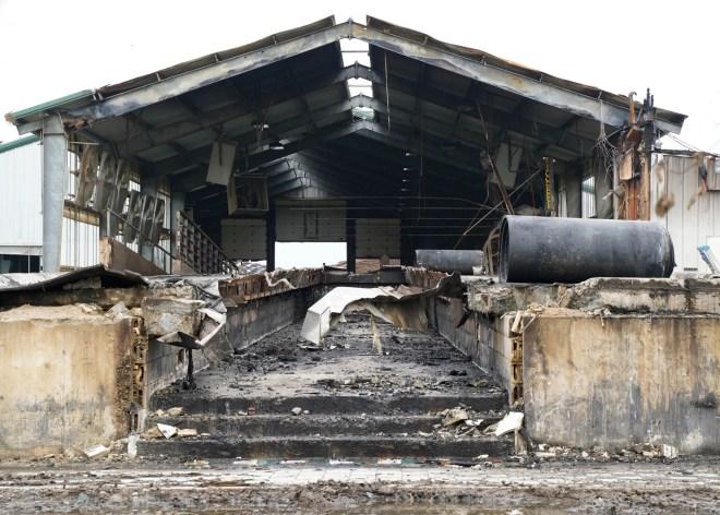 Fire tore through the milking barn at Hoffland Dairy July 5, killing 30 cows. Dairy owner Luke Vanderhoff is working on rebuilding.