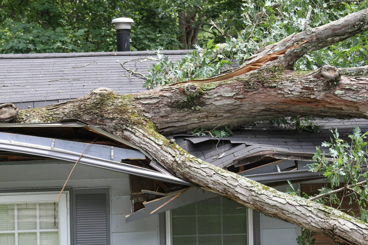There are steps you can take to protect your home from severe winds before storms strike.