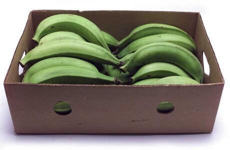 Plantains box
