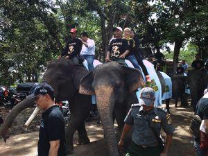 naik-gajah-dalam-festival-way-kambas