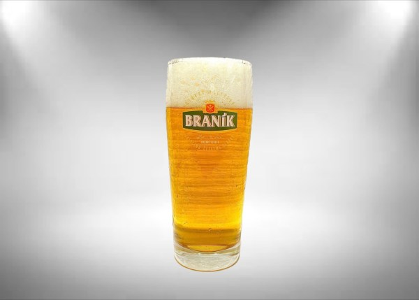 Branik Beer Glass