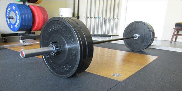 a quick look at american barbell sport bumper plates
