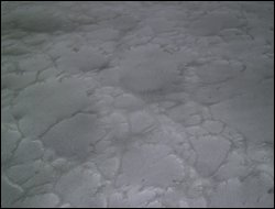 Metallix-Storm-Cloud-Basecoat-With-Storm-Cloud-Effects-2-Sm