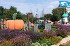 gardaland-tribe-history-aperture-speciali-magic-halloween-2014-37