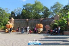 gardaland-tribe-history-aperture-speciali-magic-halloween-2014-43