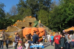 gardaland-tribe-history-aperture-speciali-magic-halloween-2014-52