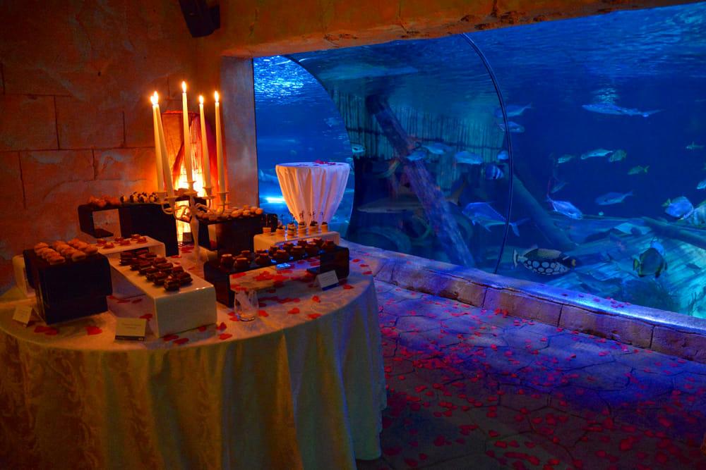 Una cena esclusiva a San Valentino al Gardaland Sea Life Aquarium