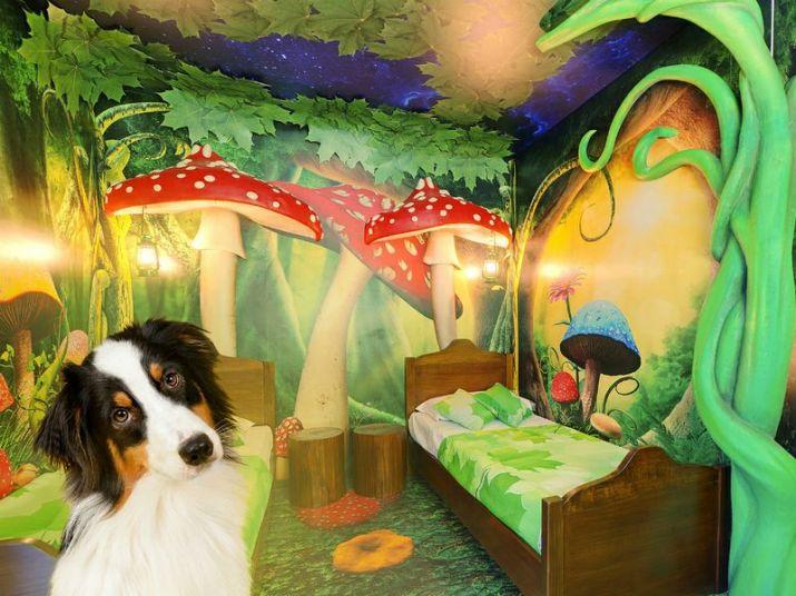 Gardaland Hotel Pet Friendly