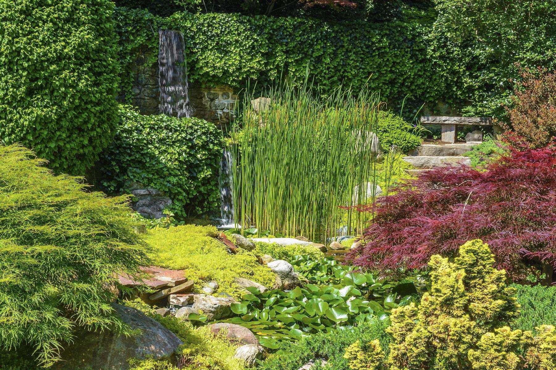 How Make Natural Pond