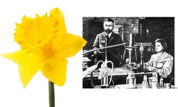 Marie Curie Garden Shed