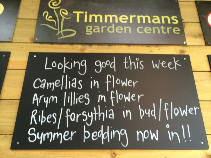 Garden Centre Blog - Timmermans Garden Centre7
