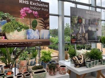 RHS exclusives