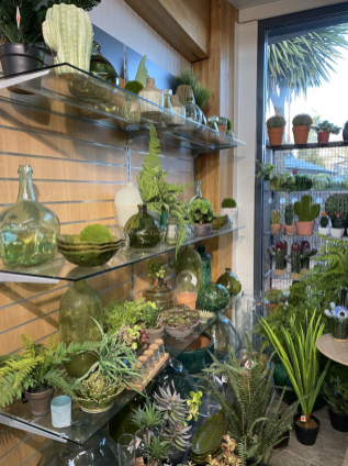 Artificial plants making a huge statement