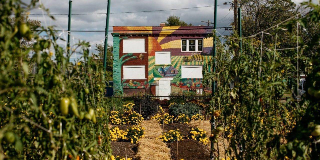 Detroit: 1st U.S. Urban Agrihood