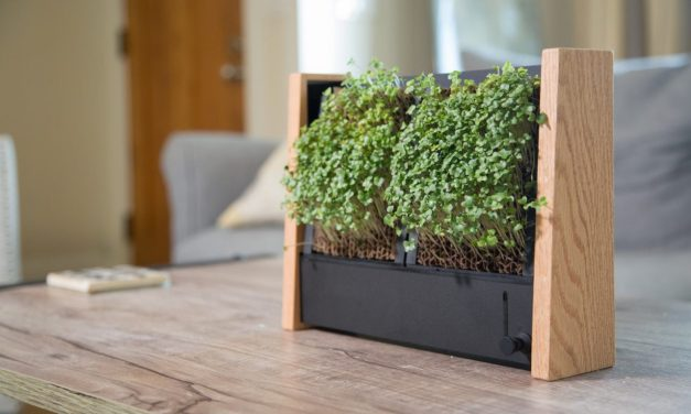 EcoQube Frame: Growing Microgreens the Easy Way